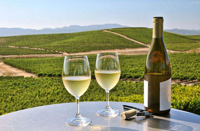 Nafplion Winetasting Tour Nemea: Two wine glasses and a bottle of white wine overlooking Namea vineyards
