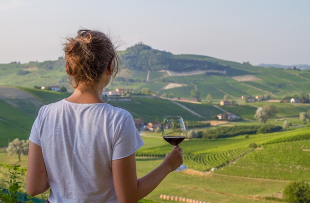 girl holding a glass of red wine and looking at the vineyards from above in Nemea
