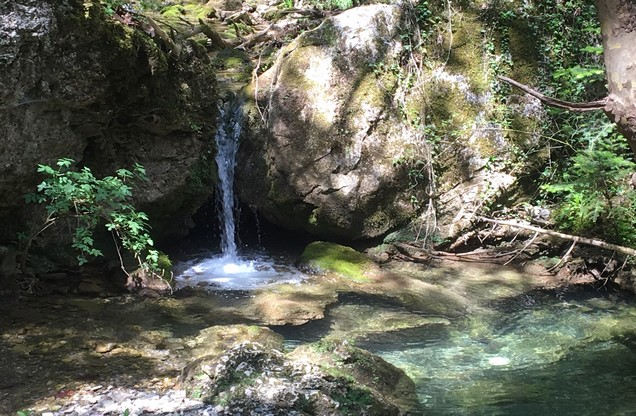 springs with small waterfall