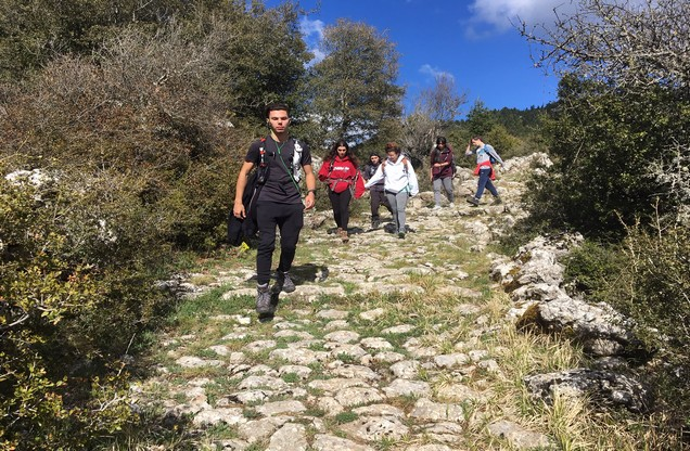 hikers descend from a hill on a stone path