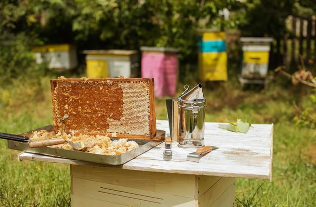 κηρήθρες και εξοπλισμός μελισσοκόμου ακουμπισμένα πάνω σε ξύλινο τραπέζι