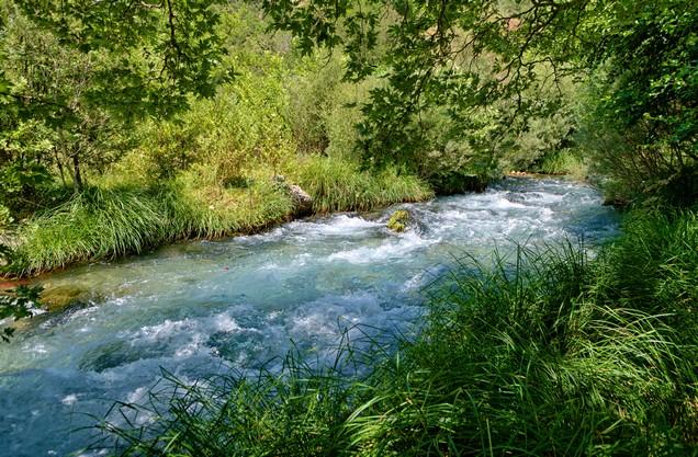 ο Λούσιος ποταμός μέσα από την πυκνή βλάστηση